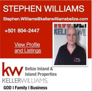 Stephen Williams Agent Block