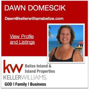 Dawn Domescik Belize Real Estate Agent